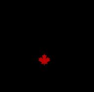 Pumpjack logo-icon with TM